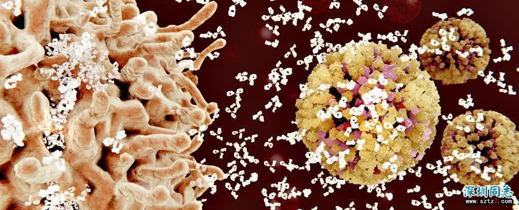 终于能治愈艾滋病了?美科学家取得巨大突破,消除31%HIV突变类型
