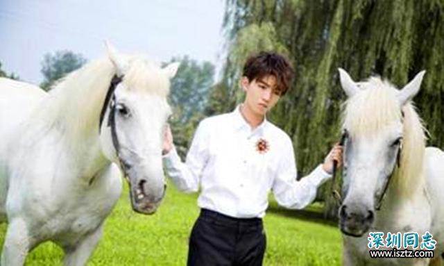 穿白衬衫的小鲜肉们,王俊凯宛如白马王子,蔡徐坤最让人心动!